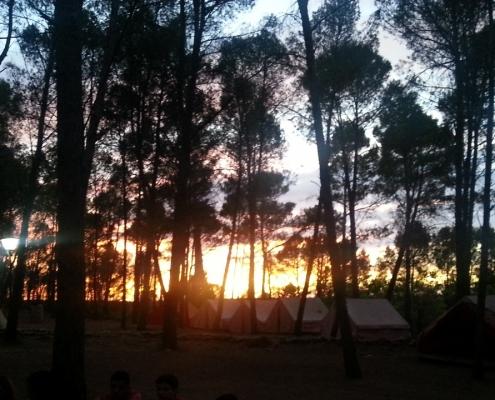 crepusculo campamento verano